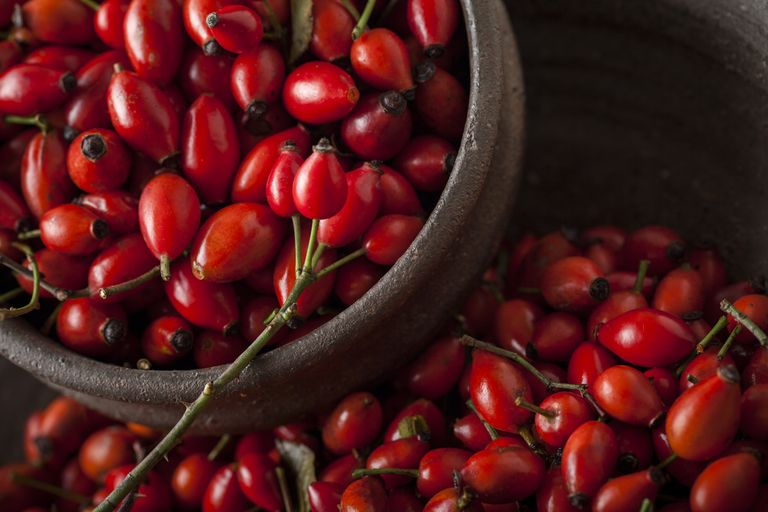 How to use rosehip oil in skincare routine