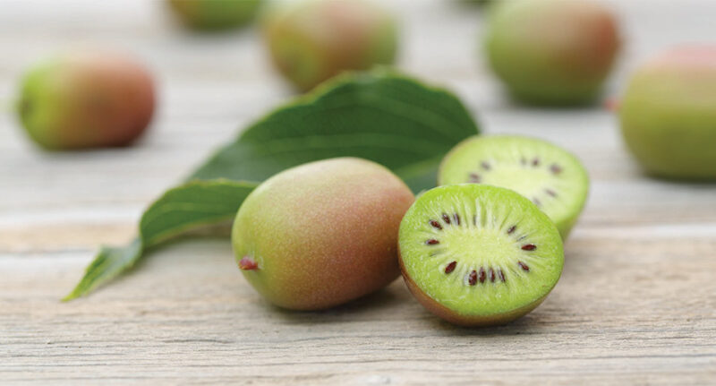 Eating kiwi berries for the first time? Apply these eating ways to have the best try