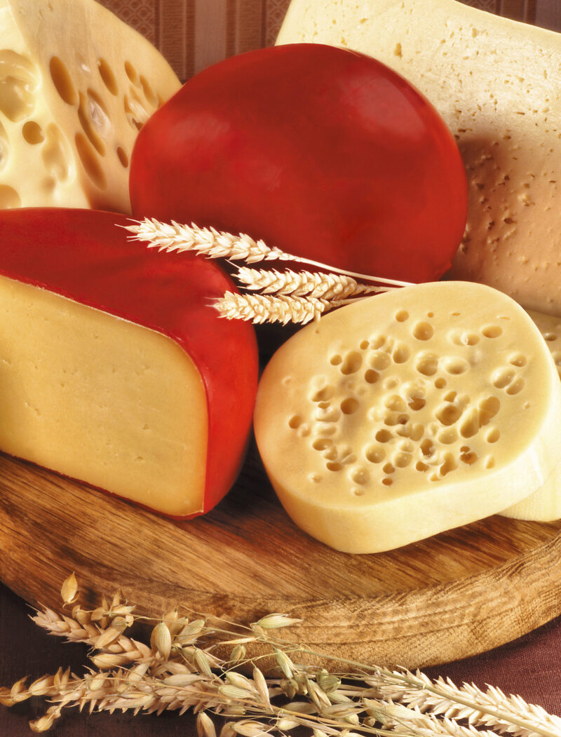 What is Gouda cheese