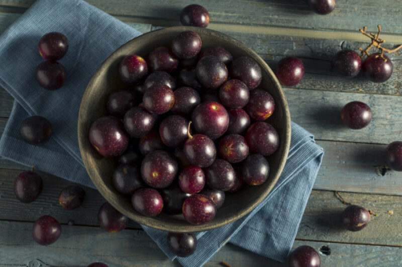 Take a look at these 5 best ways to eat muscadine grapes
