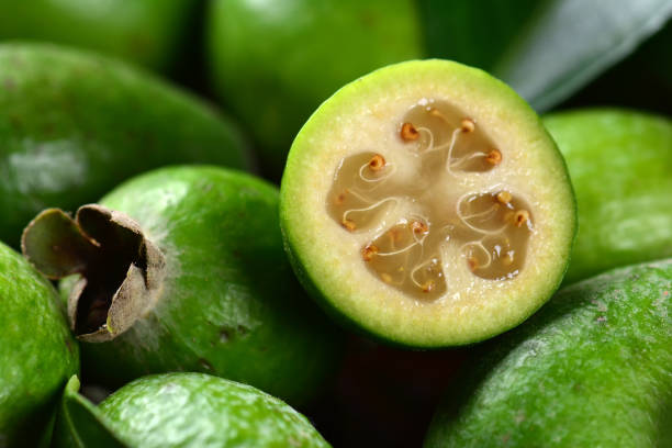 Top recipes make the most of fabulous feijoa fruit